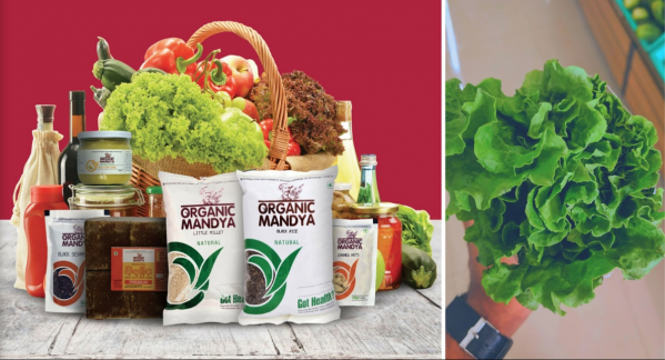Where Can I Buy Organic Groceries & Milk in Electronic City
